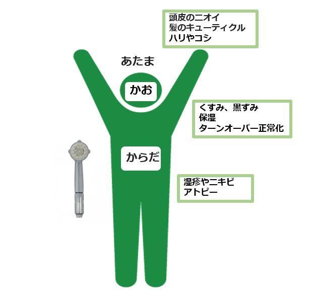 ミラブル効果部位別(頭、顔、体)